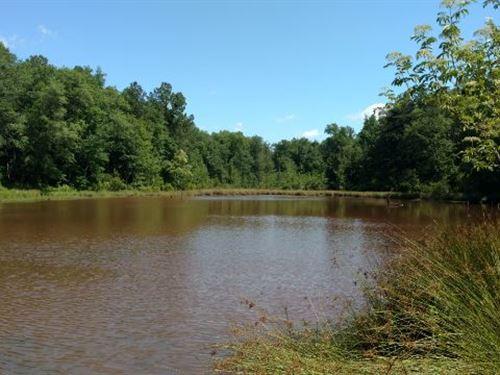 Griswoldville Pond : Macon : Jones County : Georgia