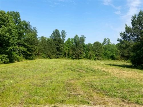 Great Home Site Or Minifarm : Trezevant : Carroll County : Tennessee