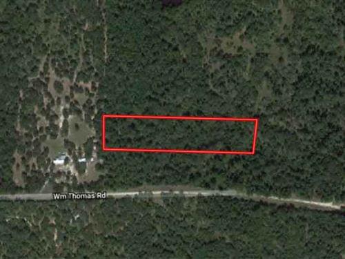 Secluded 2.86 Acres in Huntsville : Huntsville : Walker County : Texas