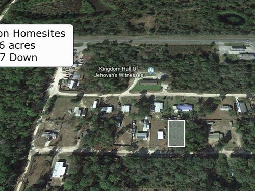 26 Acre Buildable Lot Near Forest : Silver Springs : Marion County : Florida