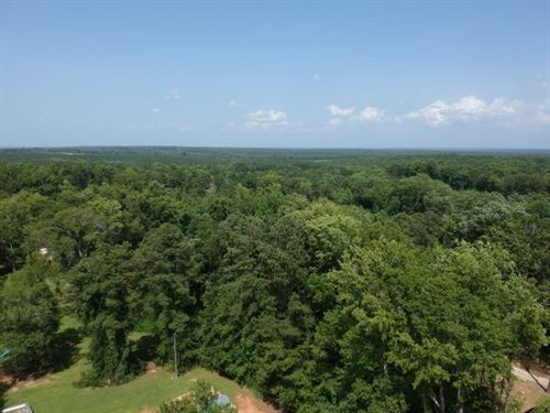 19 Acres, Fairfield County, Sc : Ridgeway : Fairfield County : South Carolina