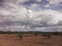 Next To Home 1/4 Acre Lot : Douglas : Cochise County : Arizona