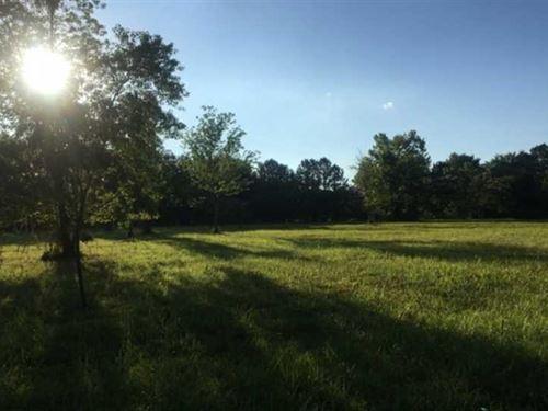 1 Acre Black Riverfront Lot in : Williamsville : Butler County : Missouri