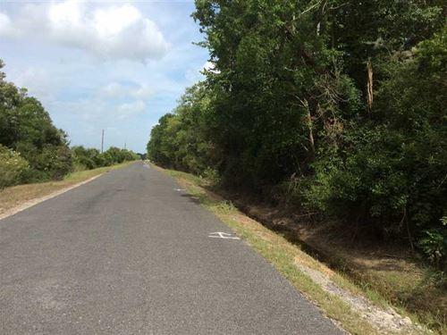 Abie Fontenot Road Tract, Jefferso : Iowa : Jefferson Davis Parish : Louisiana