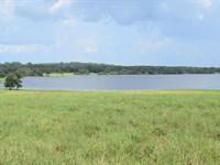 Owner Finance 17 Ac Lakefront/Pond : Brooksville : Hernando County : Florida