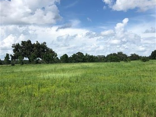 Owner Financing 10 Ac Lake Access : Brooksville : Hernando County : Florida