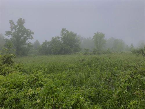 Patten Mills Rd, 15 Acres : Stockport : Washington County : Ohio