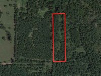Secluded 5.0 Acres In Plantersville : Plantersville : Grimes County : Texas