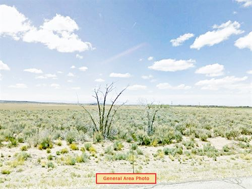 5.3 Acre Lot Near Fort Garland : Fort Garland : Costilla County : Colorado