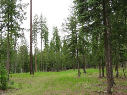 Harrels 5 Acres : Troy : Lincoln County : Montana