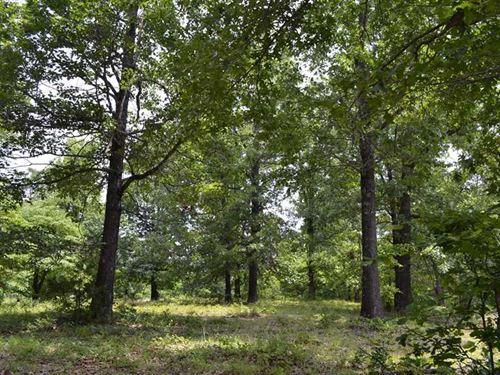 18.74 Acres Approximately 4 MI : Harriet : Searcy County : Arkansas