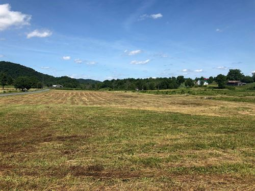 .79 Acre Unrestricted, Level Lot : Rogersville : Hawkins County : Tennessee