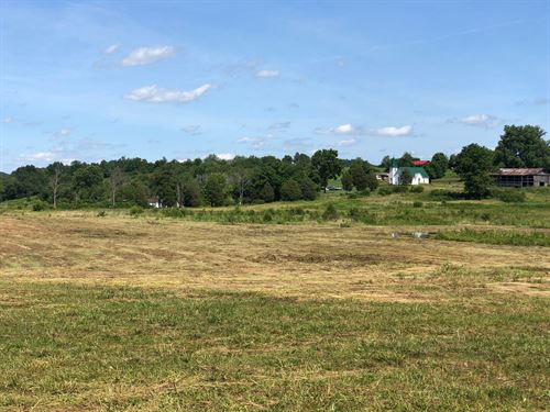 .78 Acre Unrestricted Lot : Rogersville : Hawkins County : Tennessee