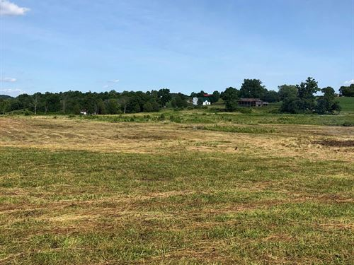 .75 Acres Acres Unrestricted Land : Rogersville : Hawkins County : Tennessee