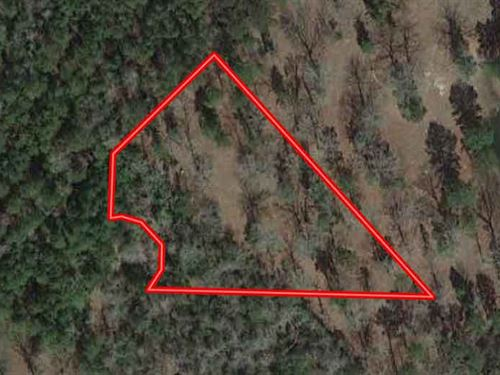 Unrestricted 1.62 Residential Acres : Huntington : Angelina County : Texas