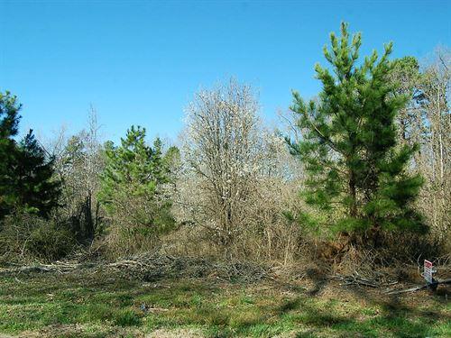 1.25 Acre Lot Near Elberton : Elberton : Elbert County : Georgia