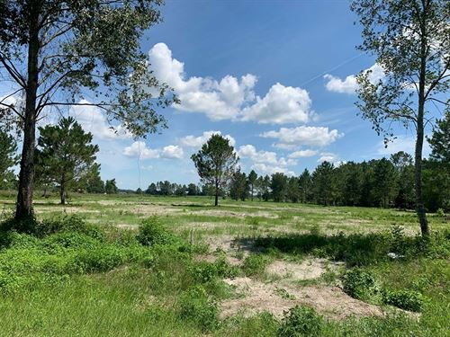Vacant Land Ready Home, Chiefland : Chiefland : Levy County : Florida