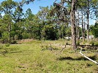 Agricultural / Residential Land : North Fort Myers : Lee County : Florida