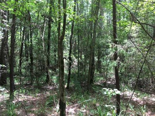 3 Acres of Undeveloped Land Locate : Jacksonville : Cherokee County : Texas