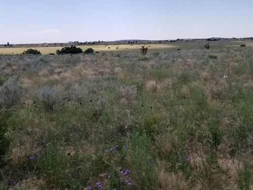 Land Estancia Valley NM Ranchette : Moriarty : Torrance County : New Mexico