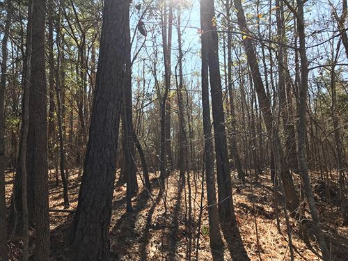 Wooded Homesite : McDonough : Henry County : Georgia