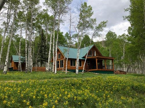 Four Seasons Colorado Cabin : Jasper : Rio Grande County : Colorado