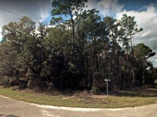 .40 Acre Corner Lot On Paved Road : Citrus Springs : Citrus County : Florida