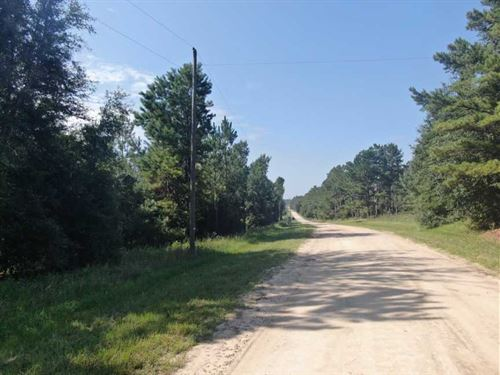 7.32 Acres Blue Ridge Landing : Lee : Madison County : Florida