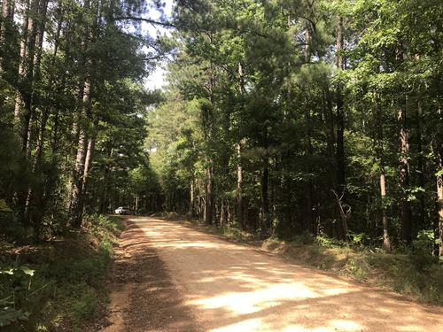 20 Acres For Dream Home & Hunting : Brookhaven : Franklin County : Mississippi