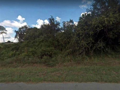 Collier County, Fl $35,000 : Rural Estates : Collier County : Florida