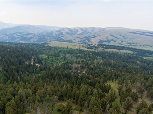 Grassy Mtn Retreat Parcel 3 : Townsend : Meagher County : Montana