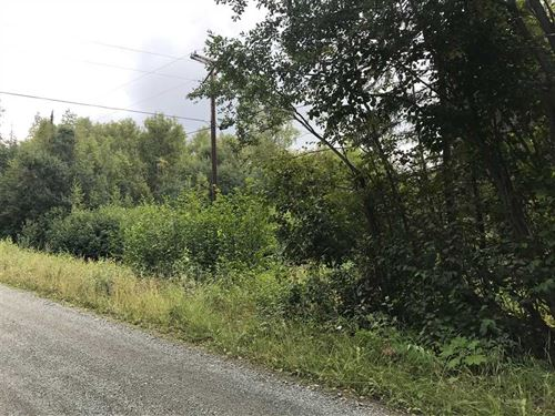 Residential Lot Close To Stocked : Big Lake : Matanuska-Susitna Borough : Alaska