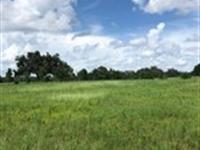 Owner Finance, 20 Acs, Lake Access : Brooksville : Hernando County : Florida