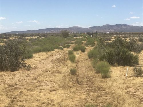 Get Away & Play- 1.5 Hours To Vegas : Chloride : Mohave County : Arizona