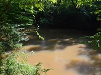 3.41 Acres On The South Tyger River : Roebuck : Spartanburg County : South Carolina