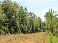Outstanding Lot Near West Point, Ga : West Point : Troup County : Georgia