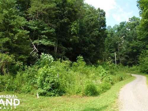 Cosby Tennessee Mountain Lot/Homesi : Cosby : Cocke County : Tennessee