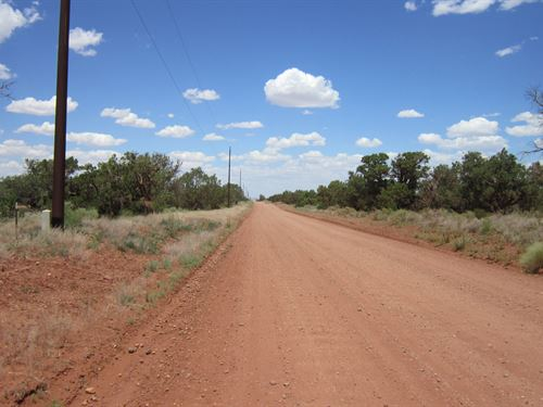 Home, Home On The Range- $65 Per Mo : Snowflake : Navajo County : Arizona