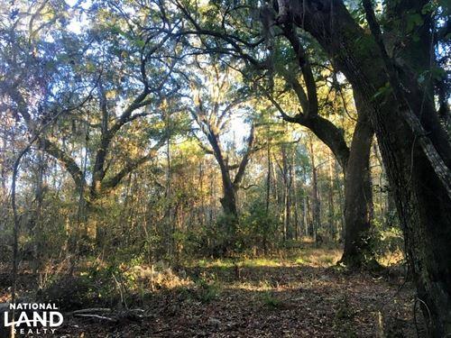 Sheldon 10 AC Rural Recreational LA : Seabrook : Beaufort County : South Carolina