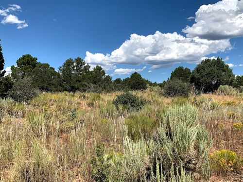 SW Colorado Land Borders National : Dolores : Montezuma County : Colorado