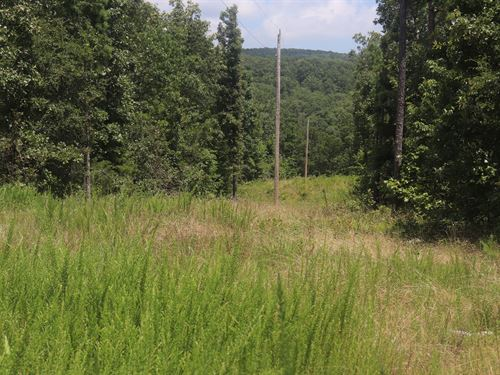 Ozarks Views And Hunting, 19.47 Acs : Dennard : Van Buren County : Arkansas