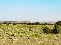 Mountain View Ranch Near Blm Land : Ramah : Cibola County : New Mexico