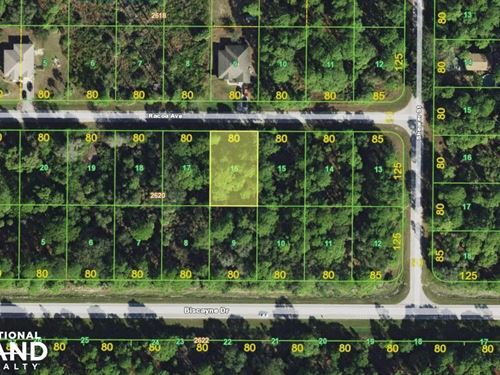 Great Port Charlotte Lot : Port Charlotte : Charlotte County : Florida