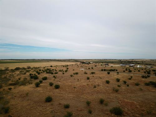 11.7 Acres In Tx, Owner Financing : Campbellton : Atascosa County : Texas