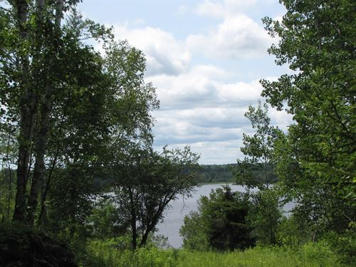 Subdivision Lot Oceanfront Maine : Machiasport : Washington County : Maine