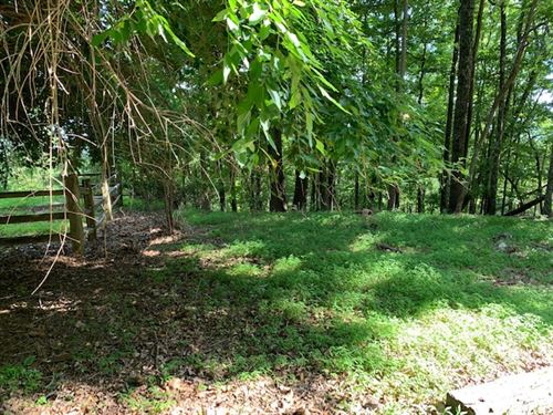 Beautiful Wooded Mountaintop Lot : Ellijay : Gilmer County : Georgia