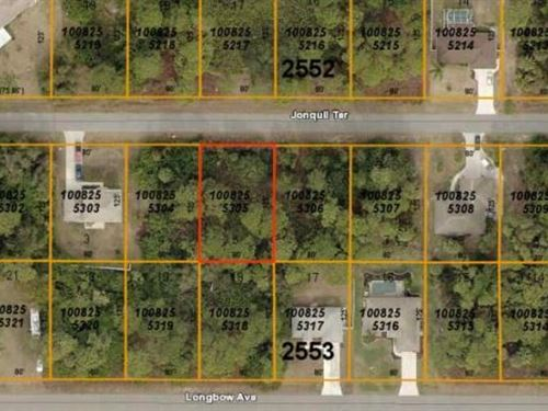 Nice North Port Lot : North Port : Sarasota County : Florida