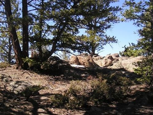 Charming Mountain Lot in Colorado : Red Feather Lakes : Larimer County : Colorado