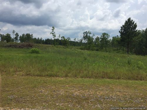 Beautiful Land With Pond : Perkinston : Stone County : Mississippi