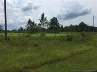 Prime Road Frontage, Lake Access : Perkinston : Stone County : Mississippi